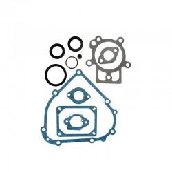 Pochette de joints Adapt. B&S Rempl. 798800