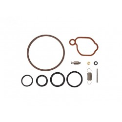 Kit carbu B&S 590589 pour Modèle 08P et 09P
