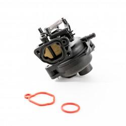 Carburateur Adapt. Briggs & Stratton 591109 - 799584 pour Série 09P