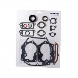 Kit de joints Adapt. Briggs & Stratton 590508 - 493263 - 496117