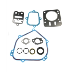 Kit joints Briggs & Stratton 798540